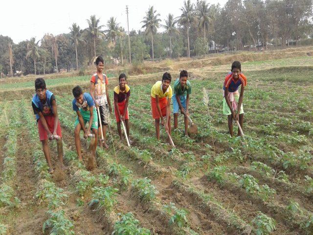 Kinderpatenschaft Joypur Jungs bei der Arbeit