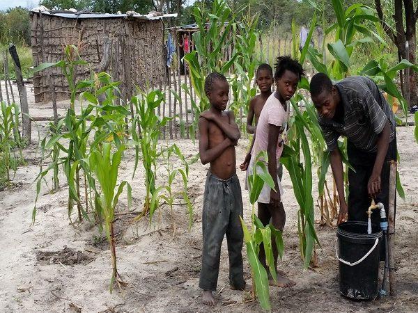 Projekt Omega Wasser für Gemüsebeete 1