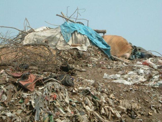 Projektpatenschaft Müllkinder Kalkutta Leben auf der Müllhalde
